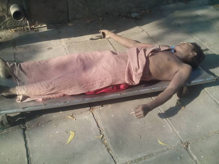 north indian dead