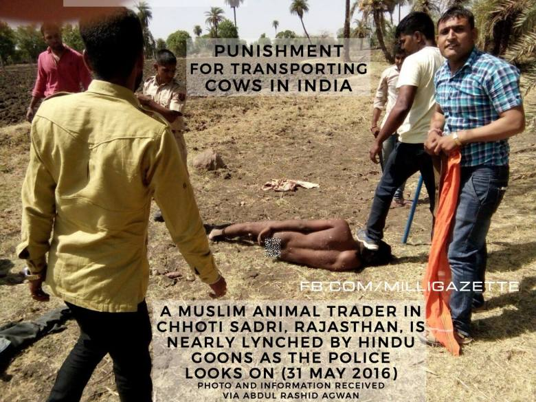 cow protection 2