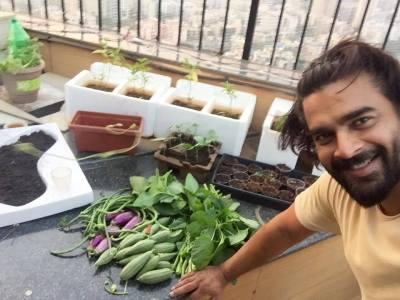 madhavan veggies