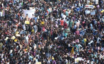 jallikattu-marina-beach-protests